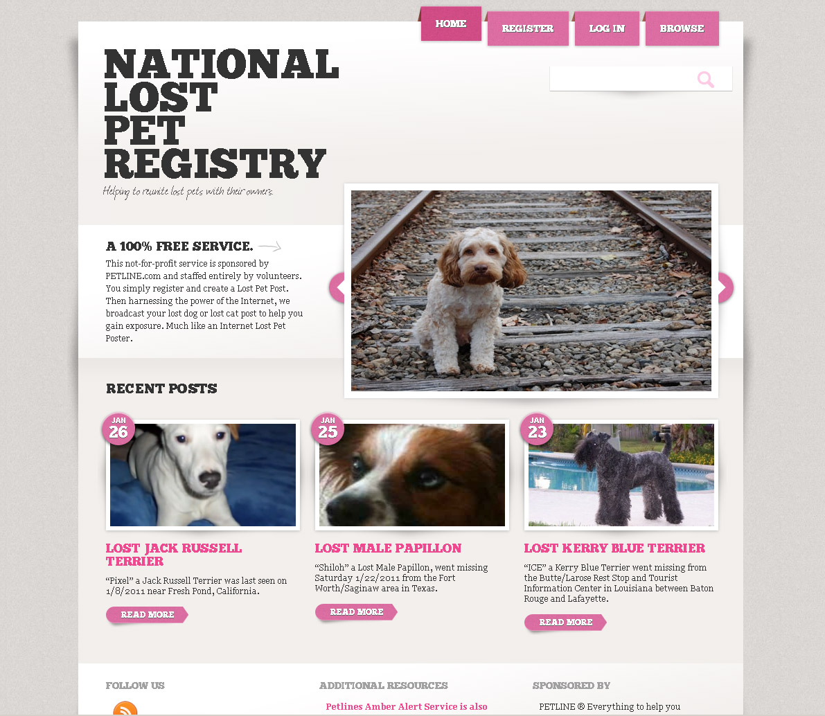 National Lost Pet Registry Example | Vivid Candi