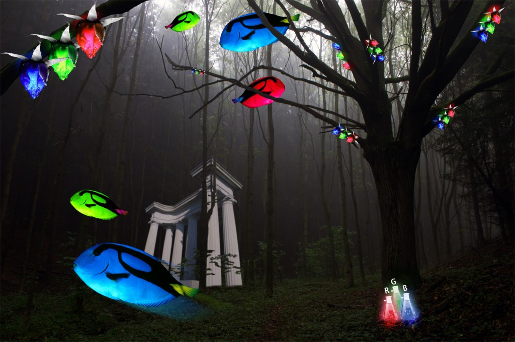 vivid Forrest surreal graphic design