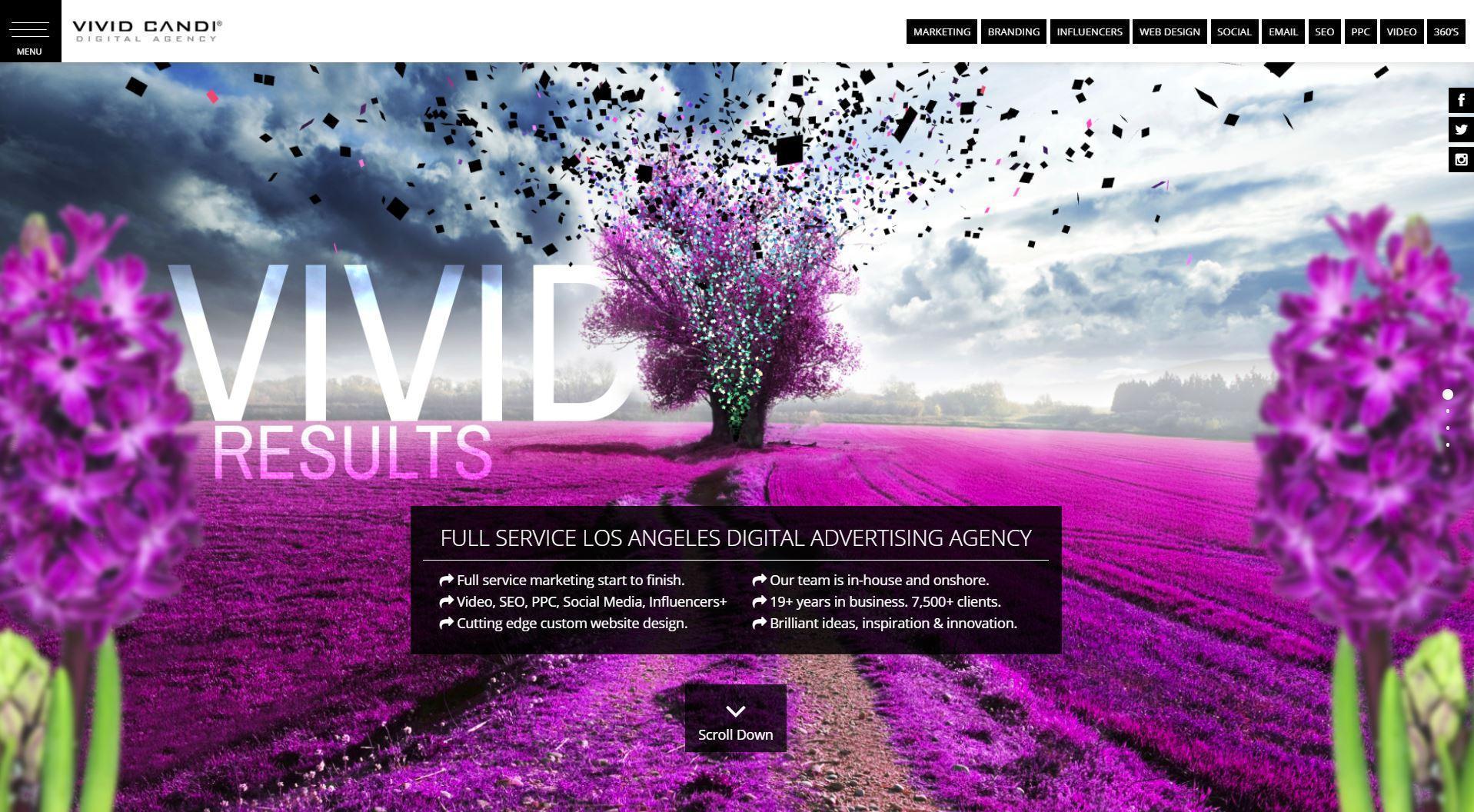 Los Angeles Digital Tech Agency :: Vivid Candi